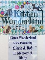 hsspca-kitten-wonderland-entry-sign-2019-jpg