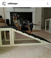 rufframp-14-inch-ramp-landing-dog-low-rider-jpg