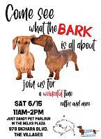 what-bark-jpg