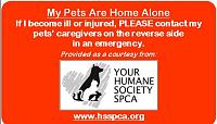 yhsspca-emergency-home-alone-cards-front-2019-jpg