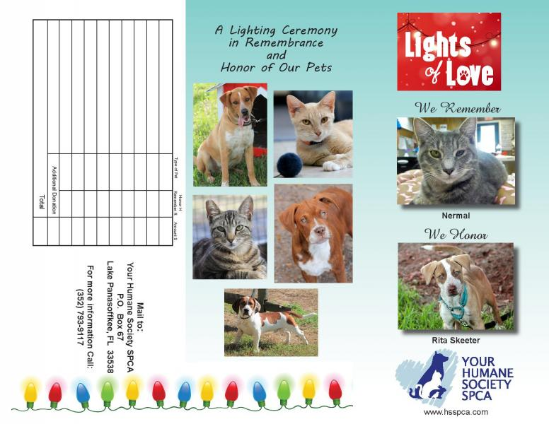 yhsspca-lights-love-brochure-2019-outside-jpg