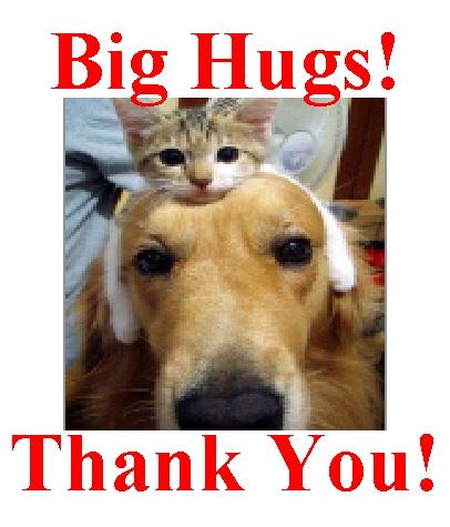 hsspca-big-hugs-thank-you-image-2012-jpg