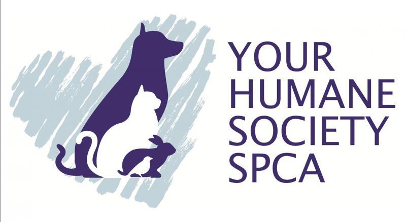 yhsspca-logo-white-background-2019-jpg