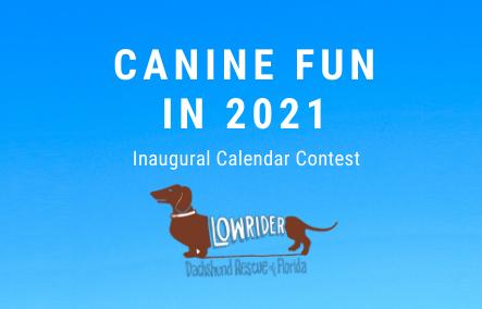 calendar-contest-banner-2-png