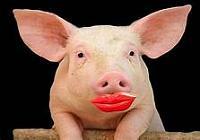 lipstick-jpg