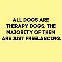 therapy-dogs-jpg