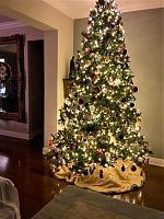 christmas-tree-2018-2-jpg