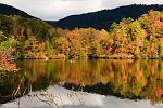Fall in TN