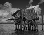The most photographed structure in Florida, the Honeymoon Cottage in the bay off Cedar Key.